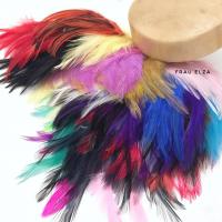 Большой микс из перьев петуха